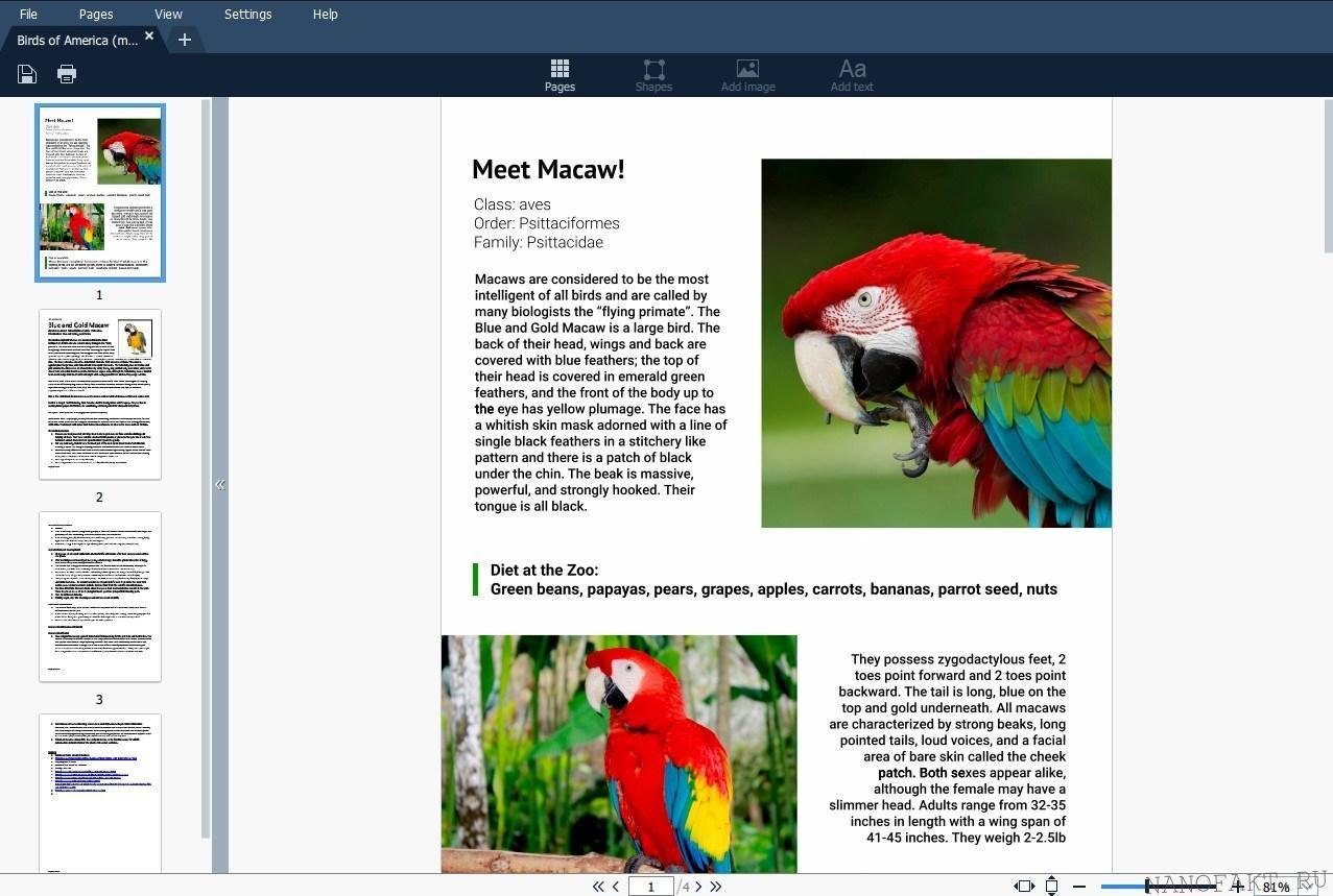Редактор PDF файлов от Movavi